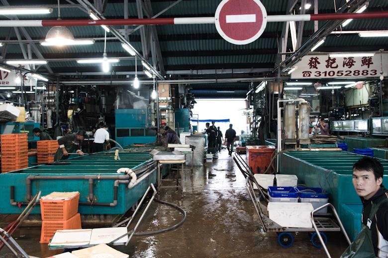 Hong Kong Cray !!! Aberdeen Wholesale Fish Market | That Food Cray !!!