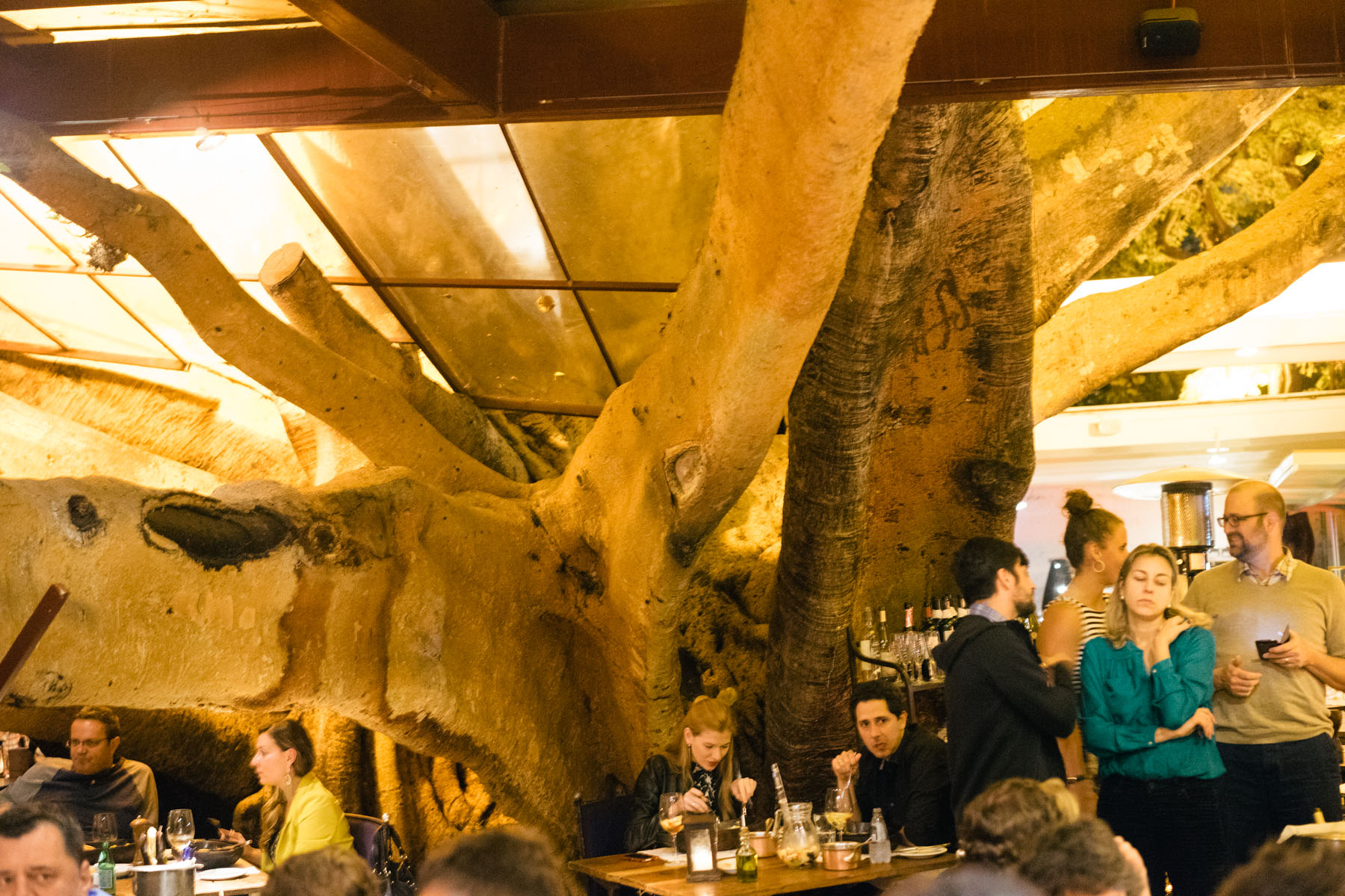 Figueira Rubaiyat Fig Tree Restaurant